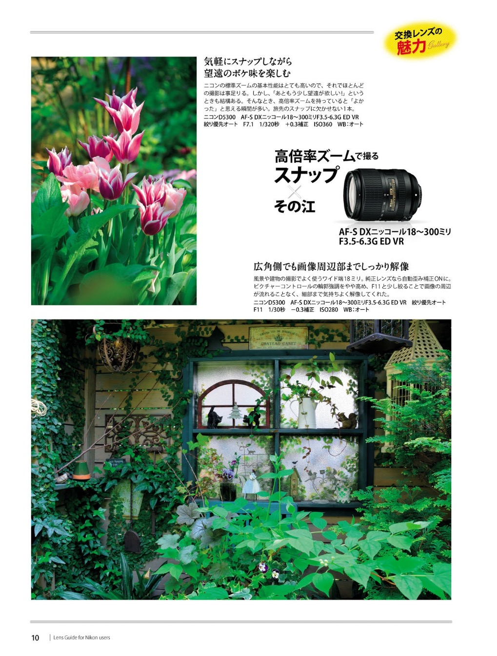 nikon-lens-guide-07